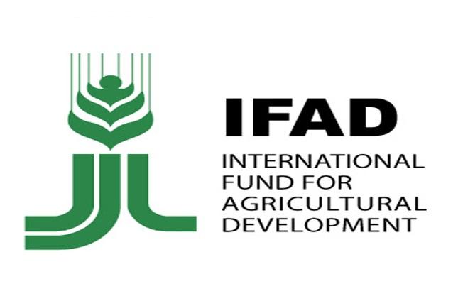 logo-IFAD-1